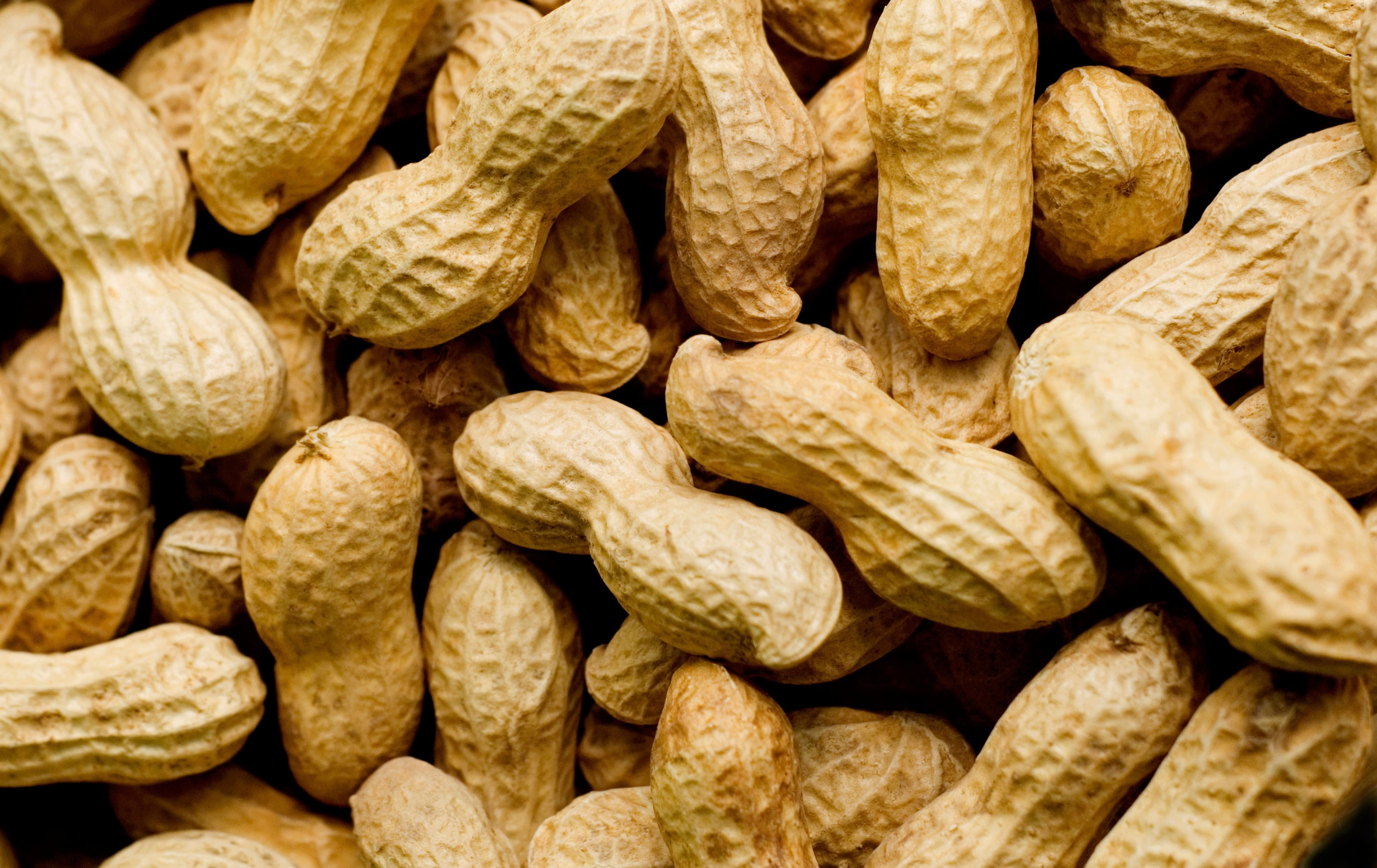 AFPD2P PEANUTS IN SHELLS SOFT LIGHT. Image shot 06/2007. Exact date unknown.
